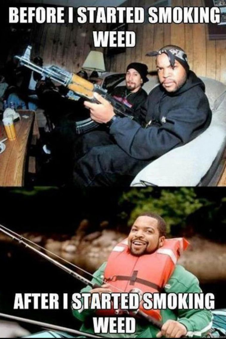 Funniest_Memes_before and after smoking weed_14384 758x1136 ice cube before & after smoking weed weed memes