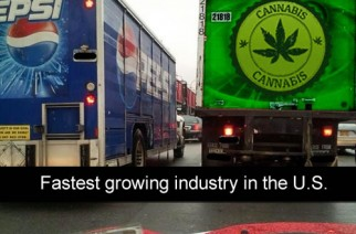 Cannabis Fastest Growing Industry…Legalize Cannabis Memes