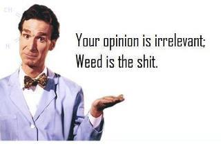 your opinion is irrelevant weed memes