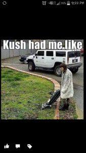 Kush had me like vacuum weed meme