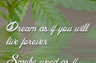 Dream as if…