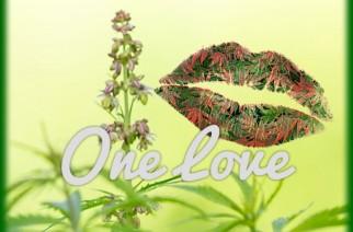One Love Peace & Weed Marijuana Memes