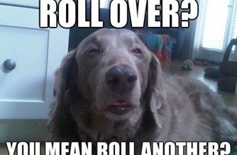 Roll Over?