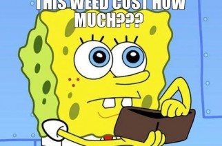 Spongebob Asks This weed cost how much??? Weed Memes