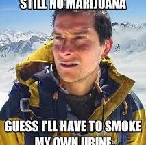 Still No Marijuana…Smoke my own urine Weed Meme