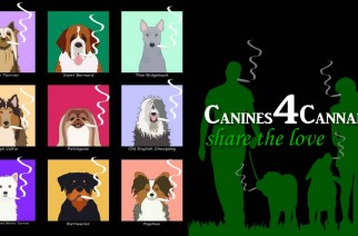 Canines 4 Cannabis - Share the love