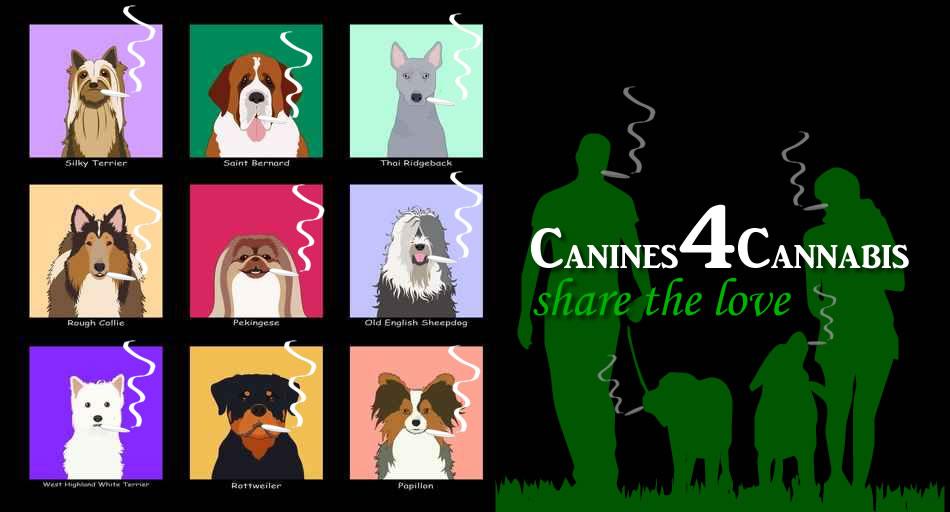 Canines 4 Cannabis Stoner Dog Meme
