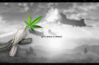 Give Peace a Chance Weed Memes