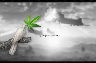 Give Peace a Chance – Dove Marijuana Leaf Meme