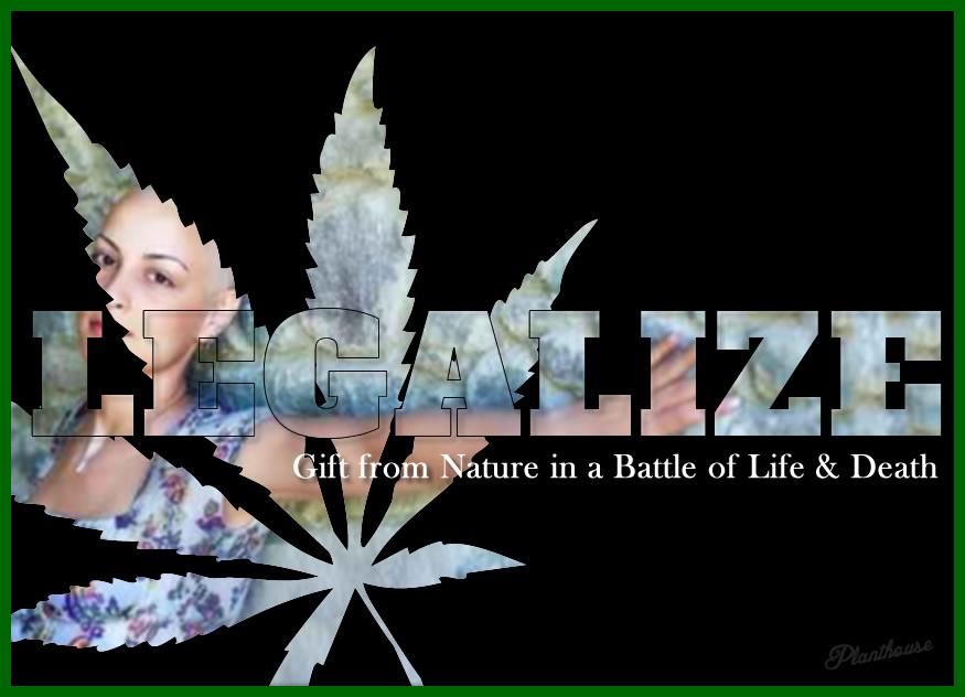 Legalize Marijuana Memes