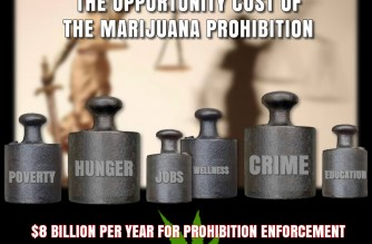 The opportunity cost of the marijuana prohibition