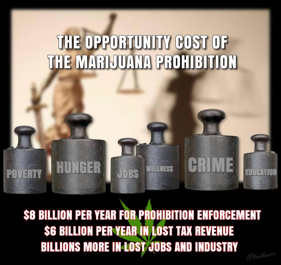 cost of marijuana prohibition - weed memes