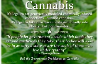 Cannabis Thomas Jefferson Quote Weed Memes