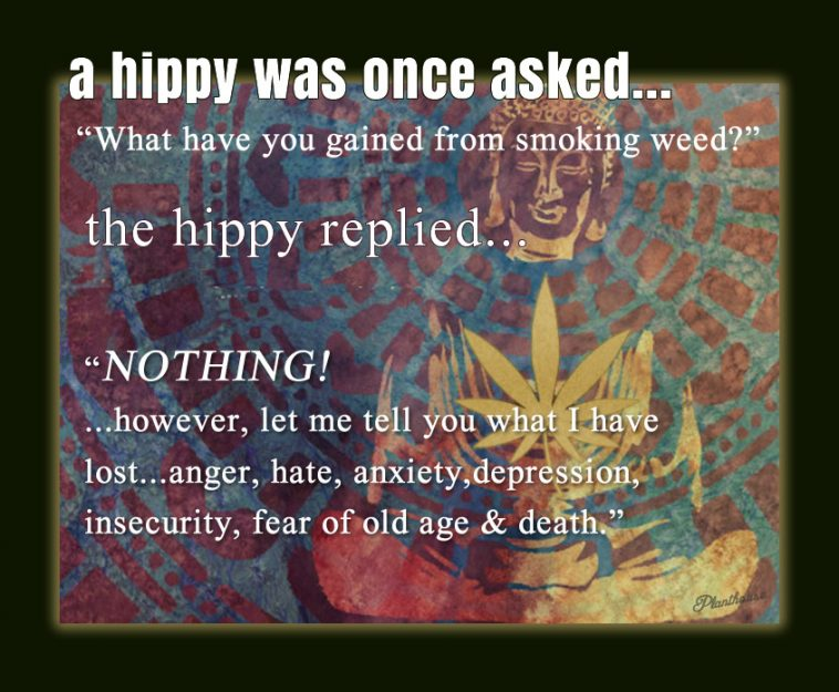 What have you gained smoking weed? Hippy Stoner Quotes