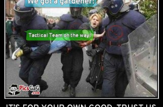 serve-protect-kill-you-weed-meme