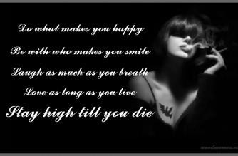 Stay High Till You Die