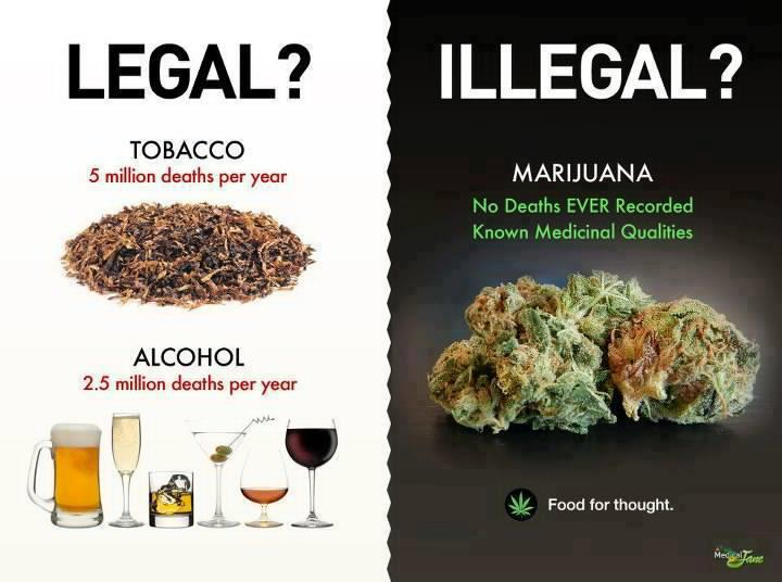 weed legalization meme food for thought weed memes weed memes