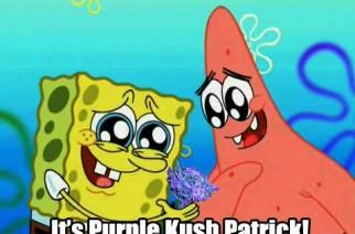 It's Purple Kush Patrick Weed Memes