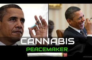 Cannabis Peacemaker Obama Weed memes