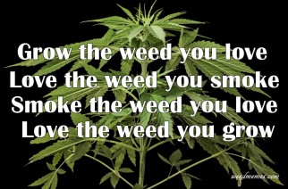 Grow Your Own Weed Memes