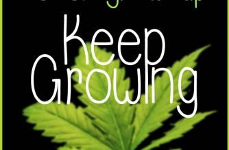 Never Grow Up. Keep Growing Weed Memes