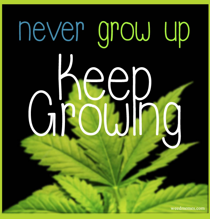 Never Grow Up. Keep Growing Weed Memes