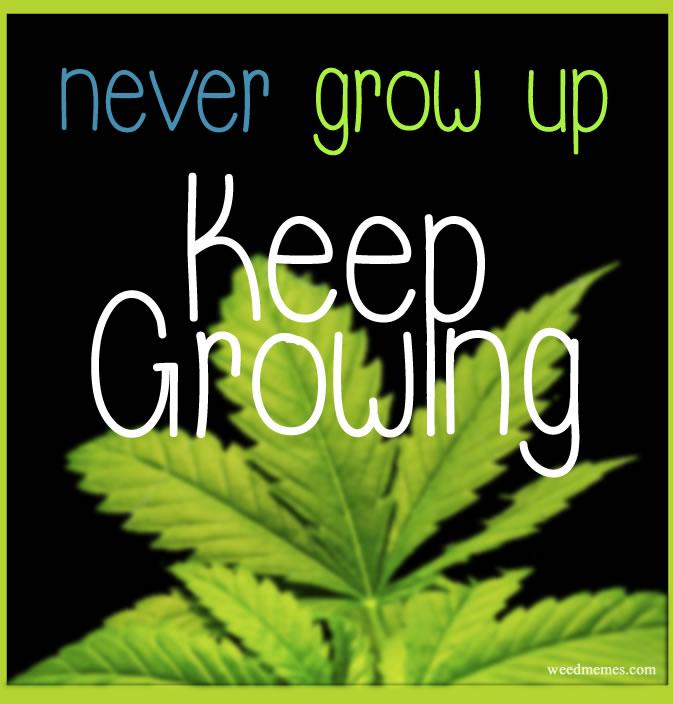 Keep Growing Weed Memes