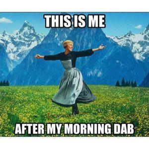 Morning dab weed memes