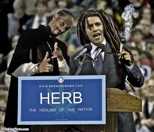 Obama Healing of Nation Weed Meme