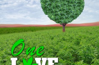 One Love Field of Dreams Weed Memes