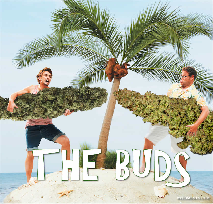 Seth Rogen & James Franco The Buds Weed Memes