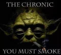 The Chronic You Must Smoke Stoner Memes
