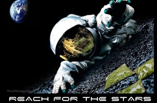 Reach for the Stars Weed Memes