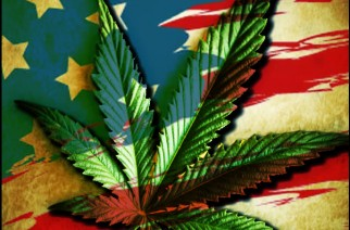 Weed Freedom Independence Day Weed Memes