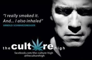 Arnold Weed Memes Schwarzenegger Smoked Pot Meme