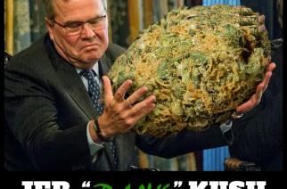 Jeb Kush Meme Dank Weed Memes Jeb Bush Smoke Weed