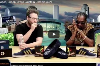 Seth Rogen Cross Joint Snoop Chronic