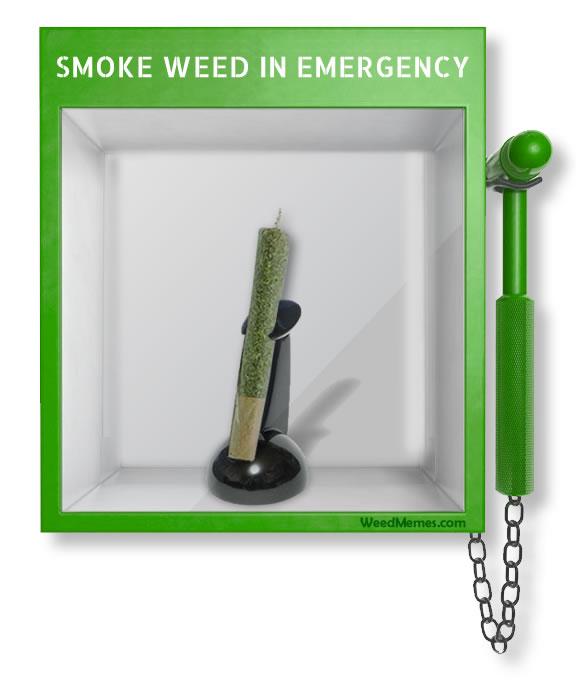 how to break in a smoker