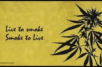 Live to Smoke Weed Smoke Weed to Live MMJ Memes