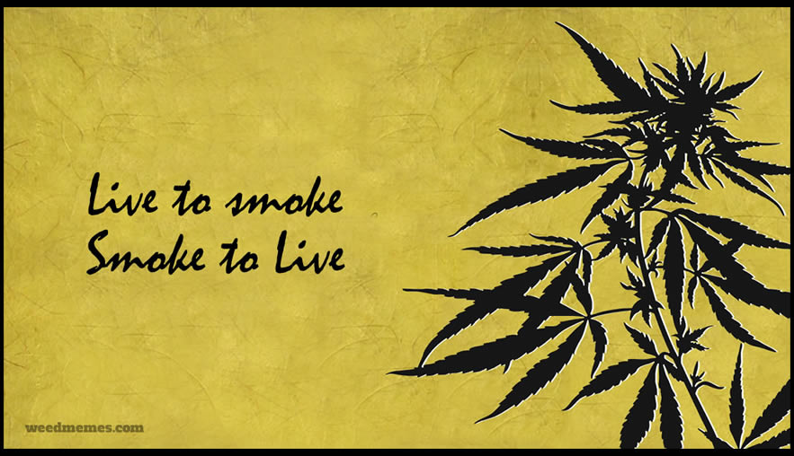 Smoke Weed Stay High Memes