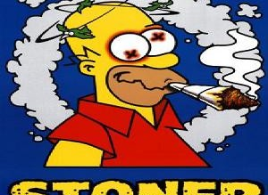 Homer Simpson Stoner Weed Memes