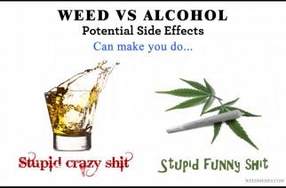 Weed vs. Alcohol – Potential Side Effects Weed Memes