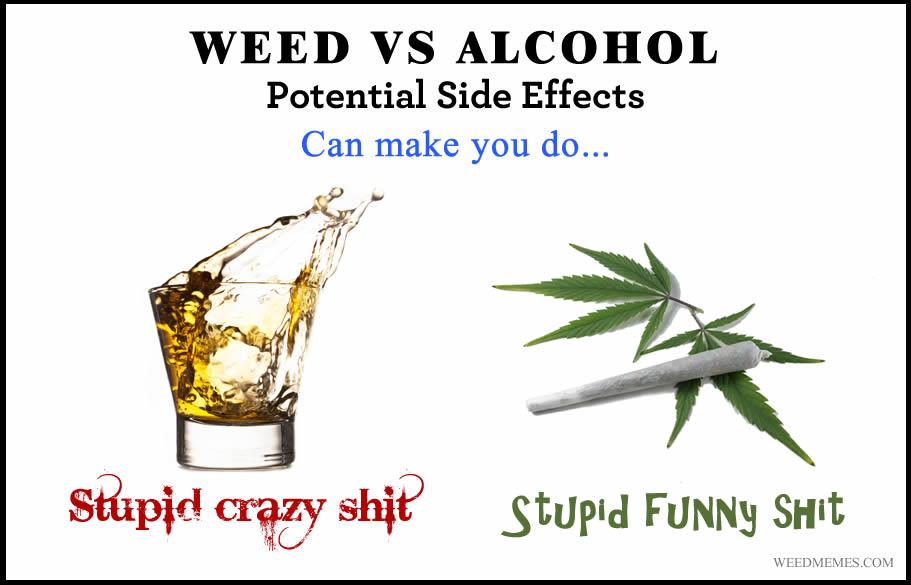 compare and contrast essay marijuana vs alcohol