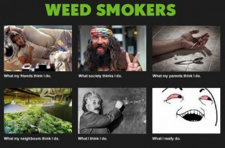What Weed Smokers Really Do Marijuana Memes