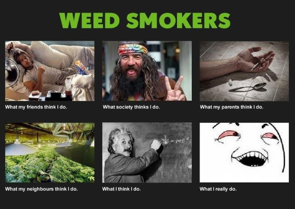 What Weed Smokers Do Meme