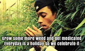 Wiz Khalifa Grow Weed & Smoke Weed Meme
