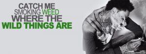 Wiz Khalifa Wild Things Weed Memes
