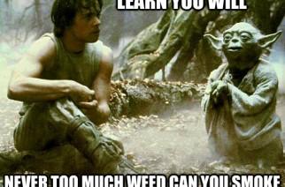 Yoda Star Wars Weed memes