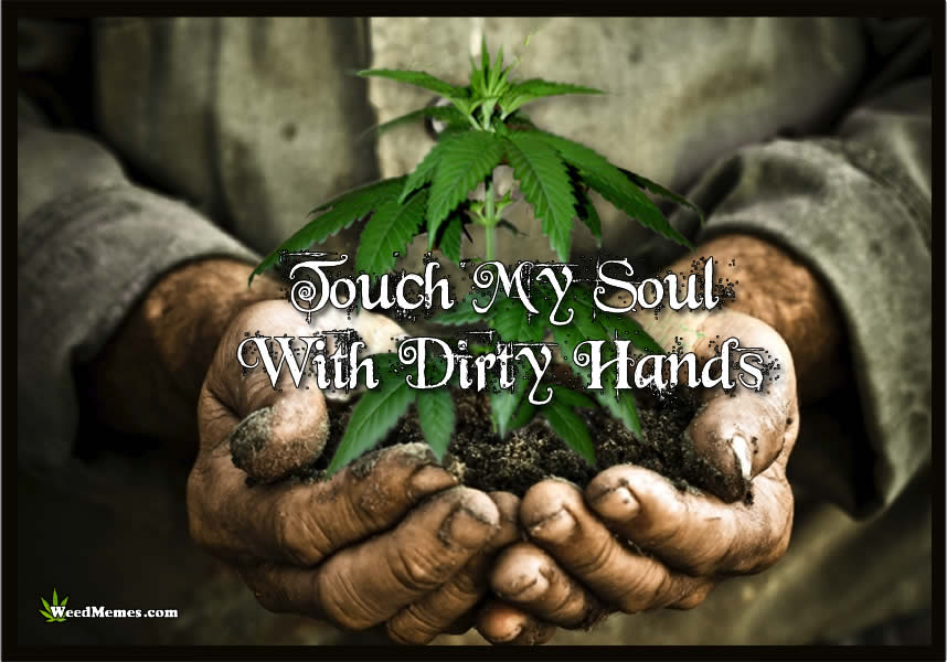 Touch My Soul With Dirty Hands Grow Weed Memes