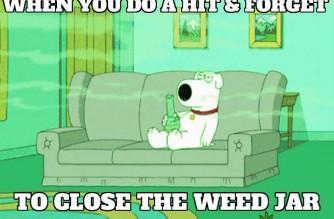 Family Guy Stoner Dog Brian Smoking Weed Memes
